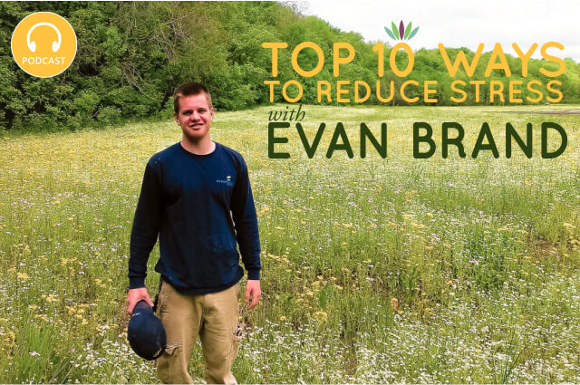 top-10-ways-to-reduce-stress-with-evan-brand1